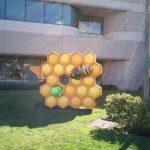 Honeycomb – Arrivée dans le jardin du Googleplex