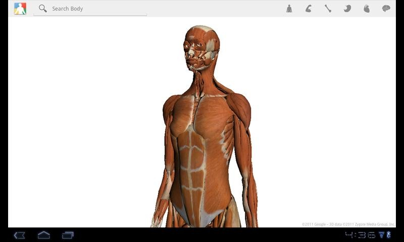 "[REQUETE] Appli ""BODY"", par Google, formidable mais disparue Google-body-android-france-02"