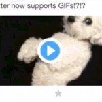 Twitter – Prise en charge des GIFs animés sur smartphone