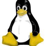 Un rapprochement Linux Android en vu ?