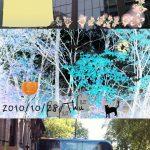 Droidget Camera – Modifier et commenter vos photos en temps réel