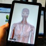 Google Body – Disponible sur Android Market