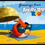 Angry Birds Rio – Première mise à jour la semaine prochaine