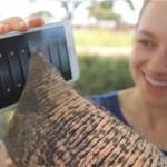 Galaxy Note – Plus gros c'est mieux! un éléphant vous le dira
