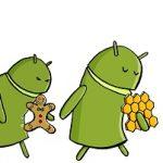 Android 5.0 – Disponible en octobre et optimisé pour les petites configurations ?
