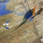 Orkcreation – nouvelle photo du mois de Novembre