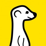 Meerkat – Le service de streaming arrive en version beta pour Android